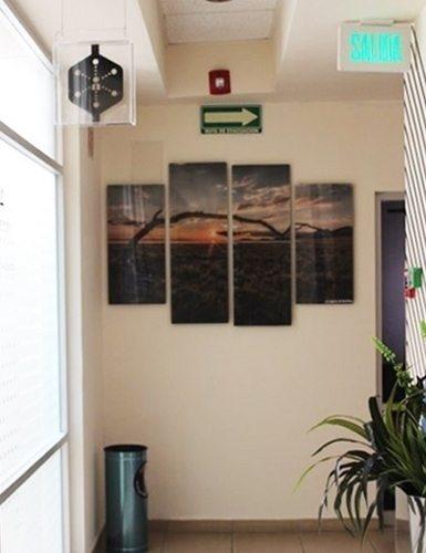 Productos y servicios de enmarcado, cuadros decorativos, enmarcado ...